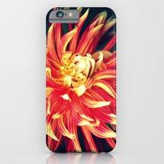 Sunburst iPhone 6s Slim Case