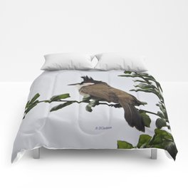 Red-Whiskered Bulbul Comforters
