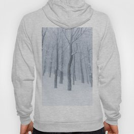 Snow covered frozen forest in winter Hoody