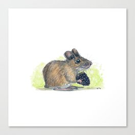 Field Mouse  Canvas Print