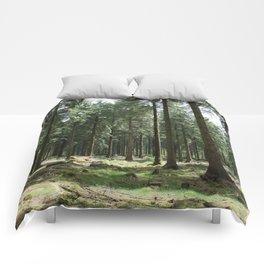 Dartmoor woods Comforters