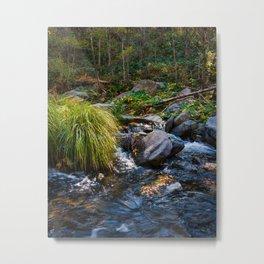 Sedona Oak Creek Metal Print