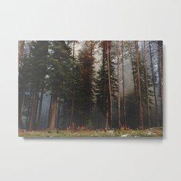 Oregon Forest Control Fire Metal Print
