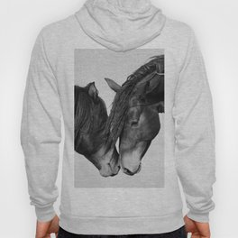 Horses - Black & White 4 Hoody
