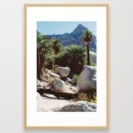 Cañon de Guadalupe Framed Art Print