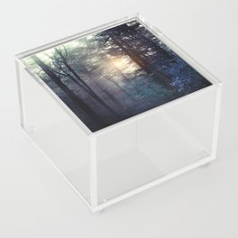 A walk in the forest Acrylic Box