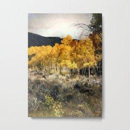Autumn Hike Metal Print