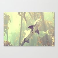 jaws Canvas Prints featuring Jaws by Amee Cherie Piek