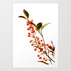 A Fruitful Life Art Print