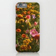 Hello! iPhone 6s Slim Case