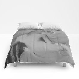 She had pride Comforters
