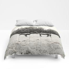 Kick Comforters