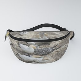 Gannets in a row Fanny Pack