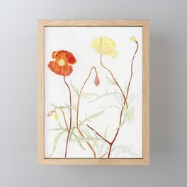 More fowers in my garden. Poppy. Framed Mini Art Print