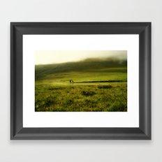 Sheep in the mist Framed Art Print