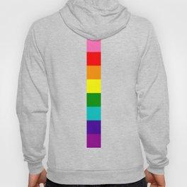 gay stripe Hoody