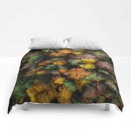 Autumn Forest - Aerial Photography Comforters