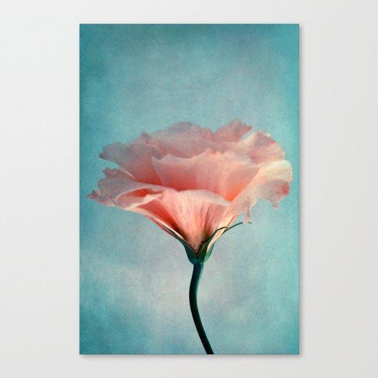 agréable Canvas Print