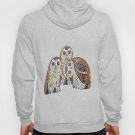 Three Owls - Art Nouveau Inspired by Klimt Hoody