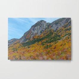 New England Mountain Foliage #2 Metal Print