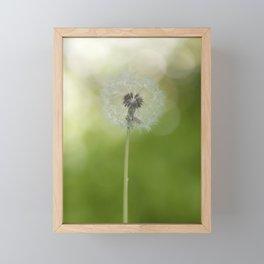 Dandelion in LOVE- Flower Floral Flowers Spring Framed Mini Art Print