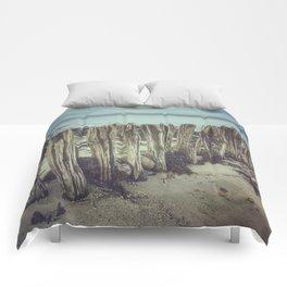 Walrus teeth still standing Comforters