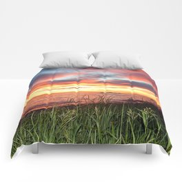 Dawn and the Grass Comforters