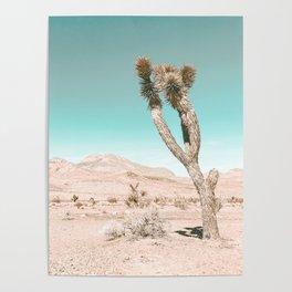 Vintage Desert Scape // Cactus Nature Summer Sun Landscape Photography Poster
