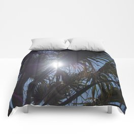 Land of the Sun Comforters