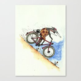 Badger likes going fast Canvas Print