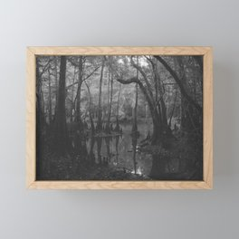 Florida Swamp Framed Mini Art Print