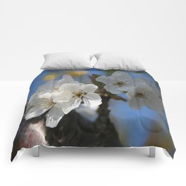 Close Up Of White Cherry Blossom Flowers Comforters