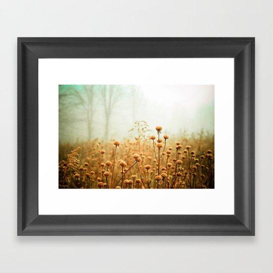 Daybreak in the Meadow Framed Art Print