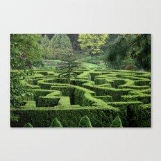 Garden Maze Canvas Print