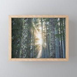 Filtered Light Framed Mini Art Print
