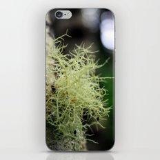 Filaments iPhone & iPod Skin