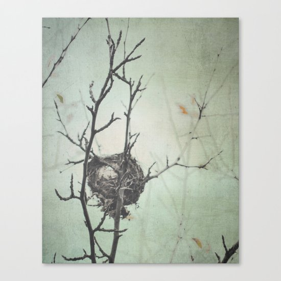 Empty Nest Canvas Print