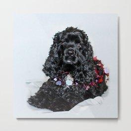 Valentine Puppy Photography Print Metal Print