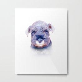 Cute Schnauzer Puppy Metal Print