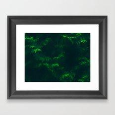 Misty Pines Framed Art Print