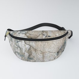 White Decay IV Fanny Pack
