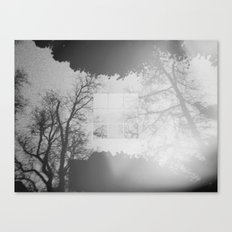 Fading into the Fog Canvas Print