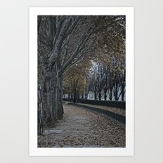 Painting or Photo?? Art Print