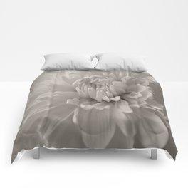 Monochrome chrysanthemum close-up Comforters