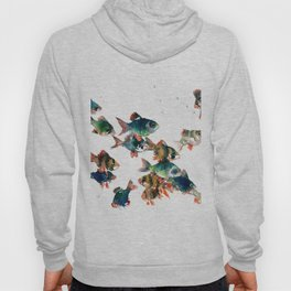 Barb Fish, Aquatic Blue Turquoise Underwater Scene Hoody