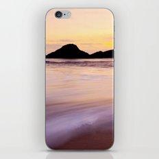 Seal Beach iPhone & iPod Skin