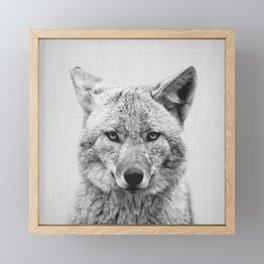 Coyote - Black & White Framed Mini Art Print