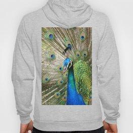 Peacock Indian Blue Hoody