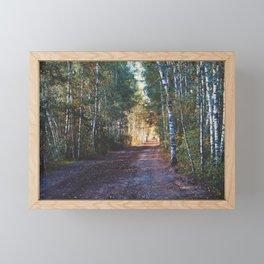 Birch-tree alley Framed Mini Art Print