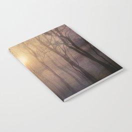 Eternal walk by Viviana Gonzalez Notebook